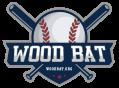 Wood Bat – Everything About Baseball!